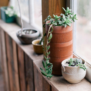 tips for selling your home, potted plants on windowsill